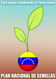 iblanova Venezuela