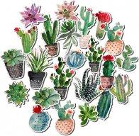 Tariños&Garden
